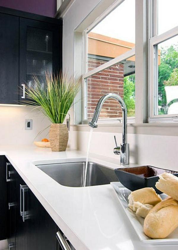 pflanzen fenster küche spüle küchenarbeitsplatte