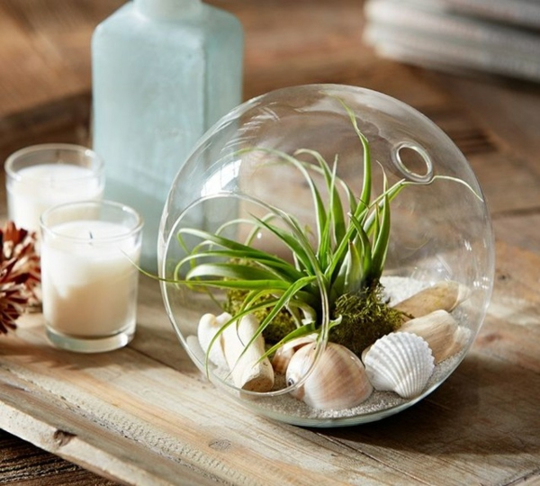 terrarium selber bauen ideen und inspirierende beispiele. Black Bedroom Furniture Sets. Home Design Ideas