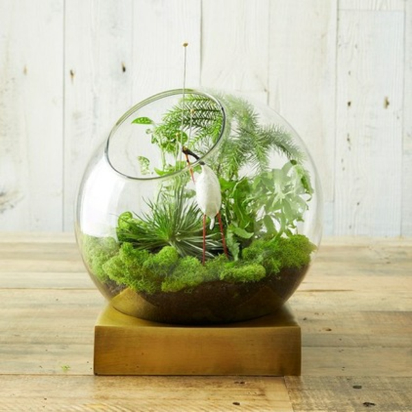 terrarium selber bauen glassphäre podest klein