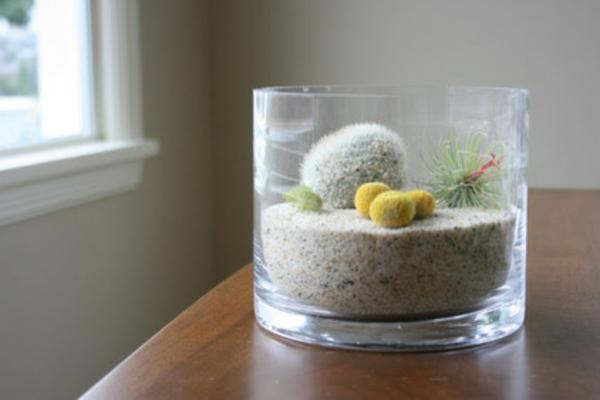 terrarium selber machen ideen glas gefäß