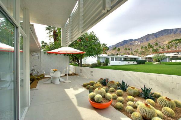 terrassen gestaltungsideen betonplatten terrassenbelag kakteen sonnenscutz sichtschutz