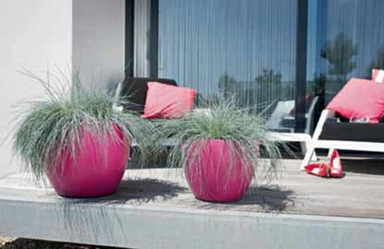 terrassengestaltung ideen mediterranes flair exotische kübelpflamzen
