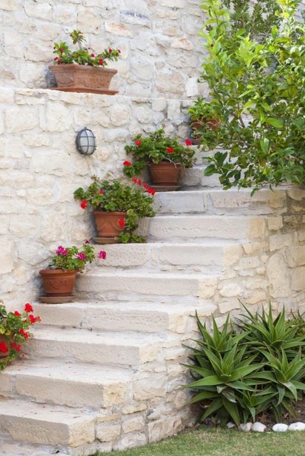 eingetopft rot blumen mediterran treppe pflanzen dürrefest