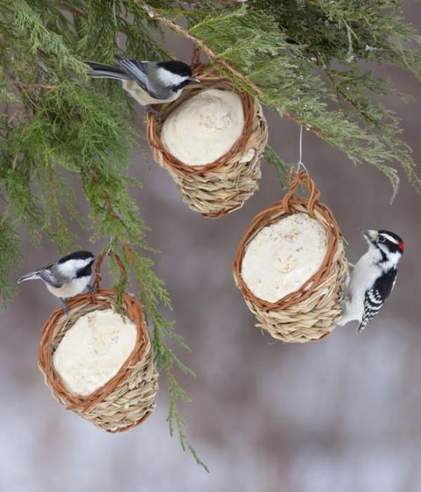vogelhäuschen selber bauen holz umweltfreundlich futter