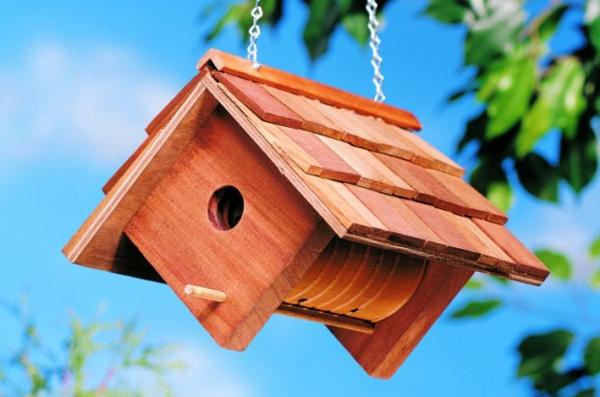 leuchtend farben umgebung hängend vogelhäuschen selber bauen