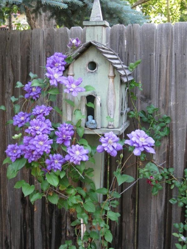 vogelhaus bauen holz umweltfreundlich lila blüten