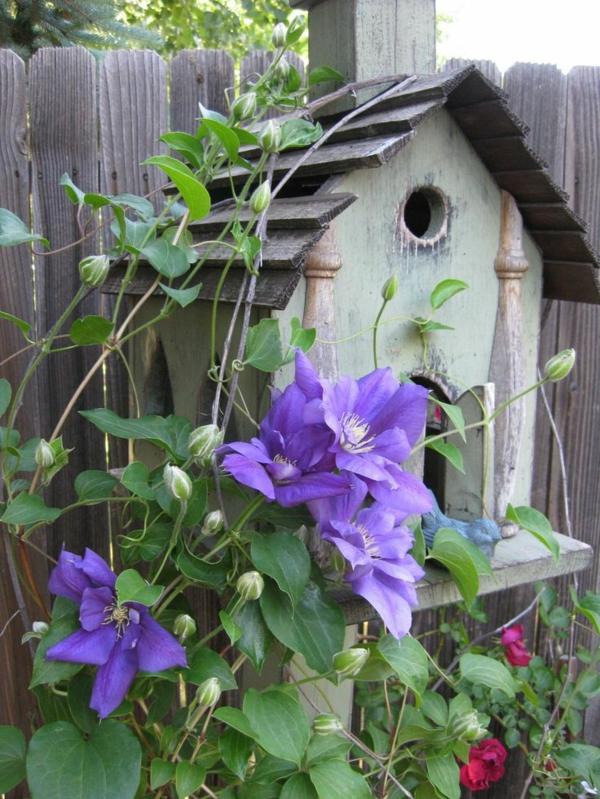 vogelhaus selber bauen holz umweltfreundlich lila