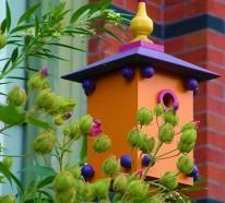 Vogelhaus selber bauen – DIY Bauanleitung und 40 Ideen für Sie
