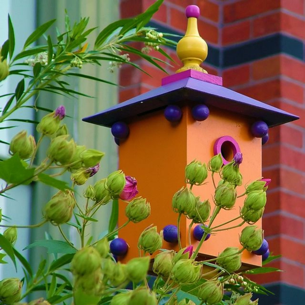 vogelhaus beständig bauen holz umweltfreundlich orange lila