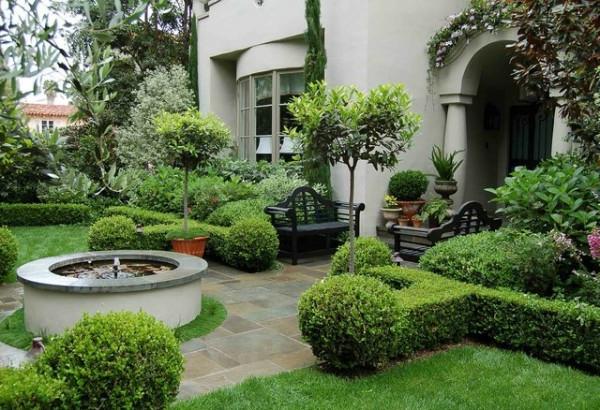 buchsbaum pflanzen und g rten wundervoll in terrakotta beh ltern. Black Bedroom Furniture Sets. Home Design Ideas
