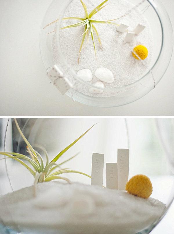 DIY luftpflanzen terrarium idee geschenk