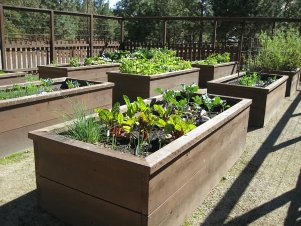Gemüse Kräuterhochbeet selber bauen praktisch