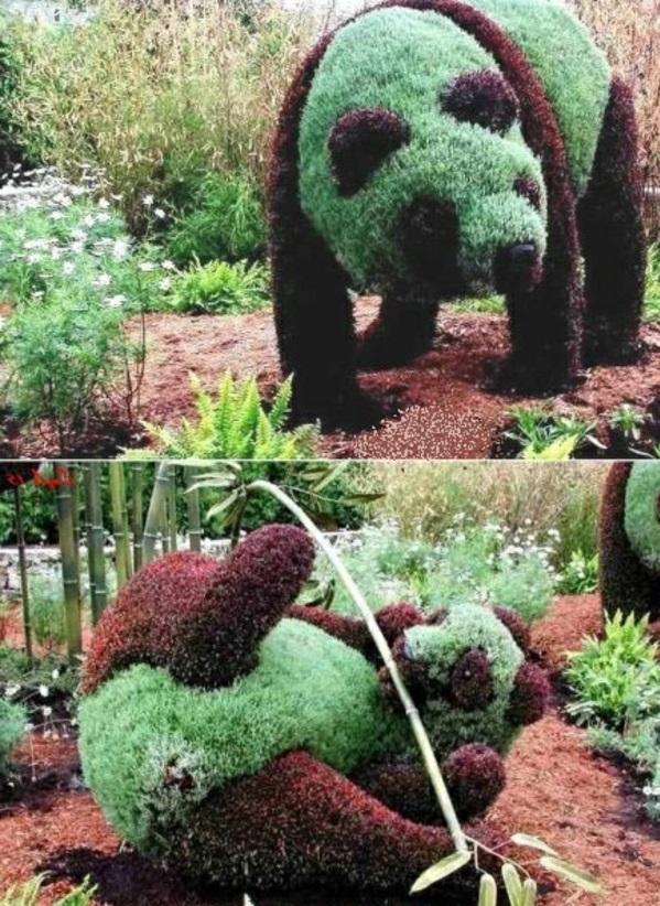 buchsbaum formschnitt garten figuren tiere panda