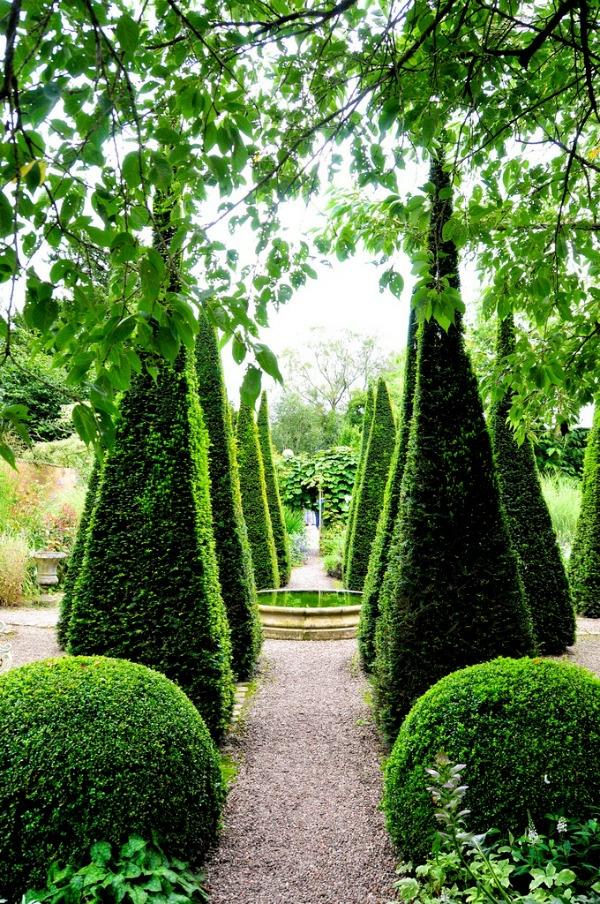 buchsbaum bäume laub pflanzen garten dreieck