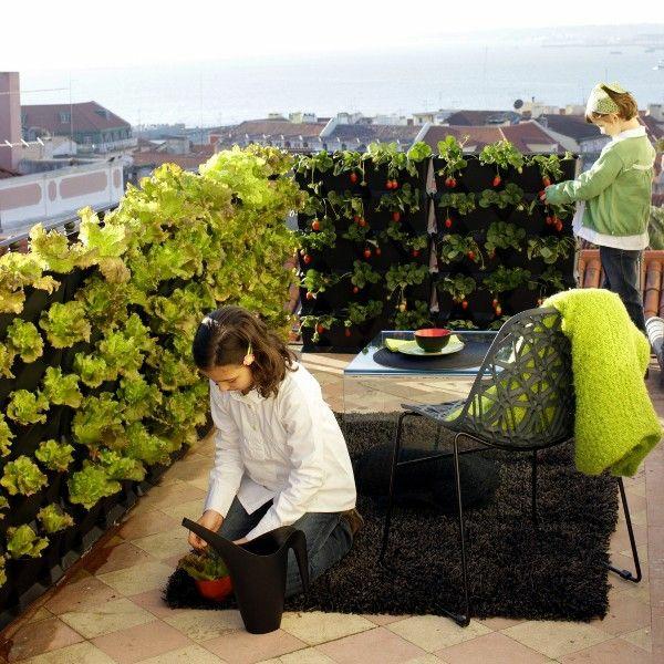 dachterrasse gestalten kräutergarten auf dem balkon dekorieren