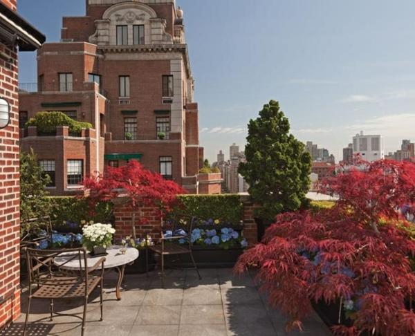dachterrassengestaltung ideen balkon bepflanzen sichtschutz hecke lebendiger zaun