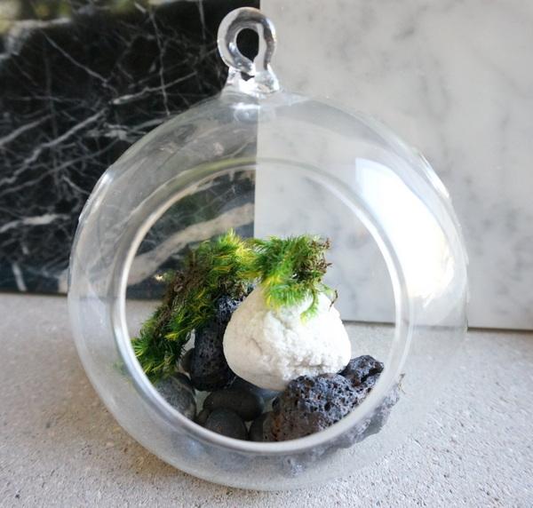 dekoartikel wohnzimmer deko ideen terrarium schmucksteine moos