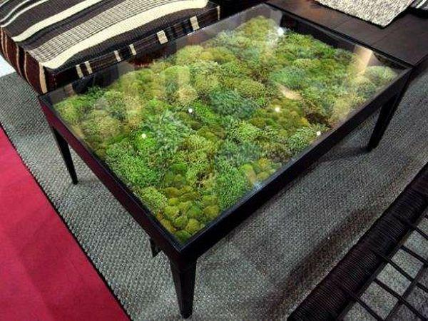 design couchtisch terrarium schick außerordentlich