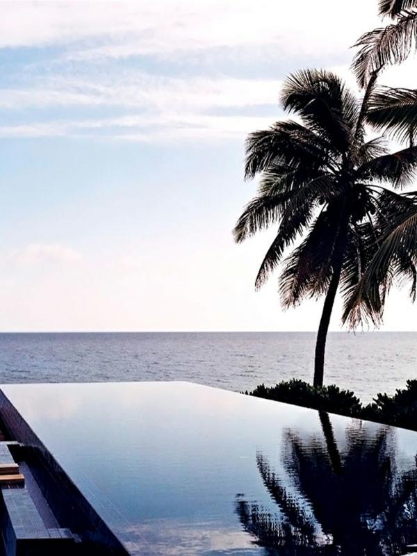 schwimmbad pool palmen infinity