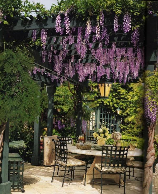 exterior garten design pergola ideen glyzinie lila