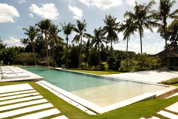 garten palmen exotisch außenbereich steinplatten