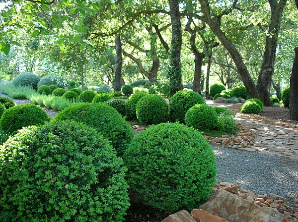 garten patio grüne pflanzen