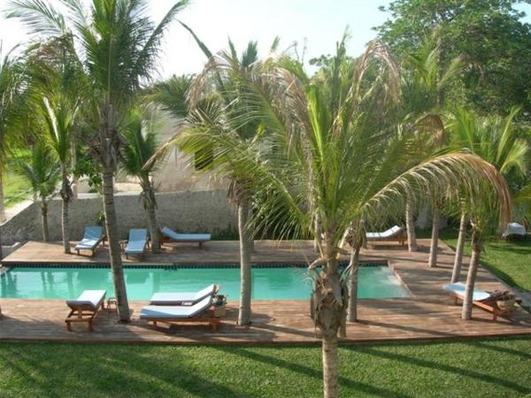 Vielfalt an palmen um das schwimmbecken herum