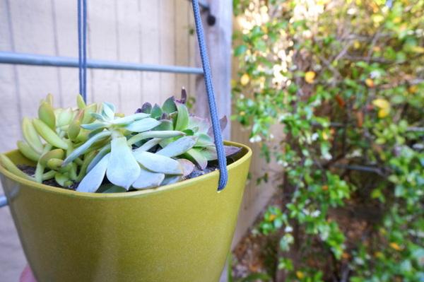 Pflanzgefäße Selber Machen hängende pflanzgefäße selber machen ein diy projekt für ihren garten