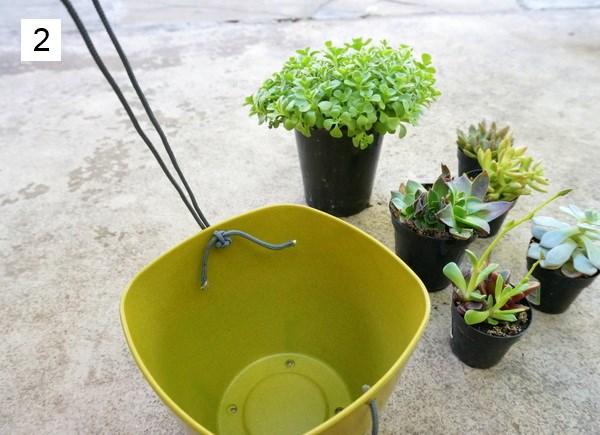 hängende pflanzgefäße selber machen sukkulenten einpflanzen