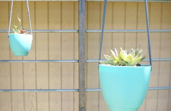 ber 1000 balkonpflanzen gartenpflanzen zimmerpflanzen. Black Bedroom Furniture Sets. Home Design Ideas