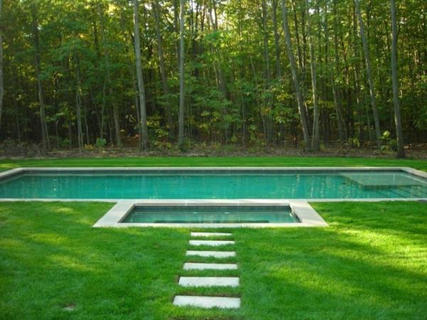 integriert schwimmbecken wald bäume