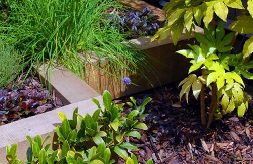 moderne gärten bilder beetkanten