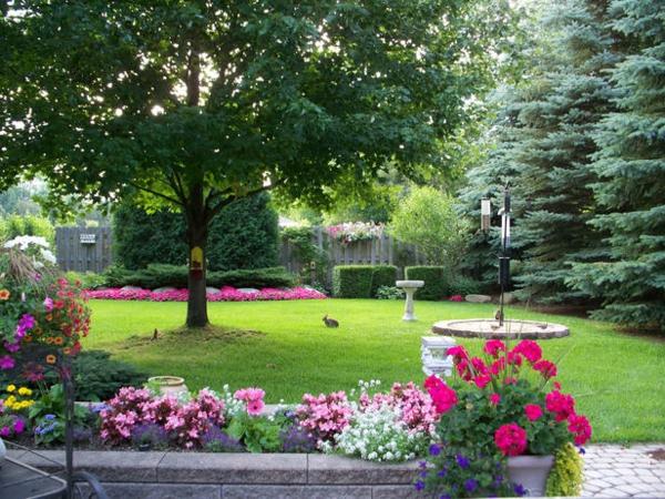 grasfläche gärten bilder beispiele gartengestaltung blumen