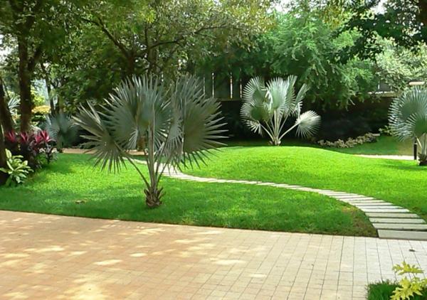 gärten bilder beispiele gartengestaltung  gras frisch