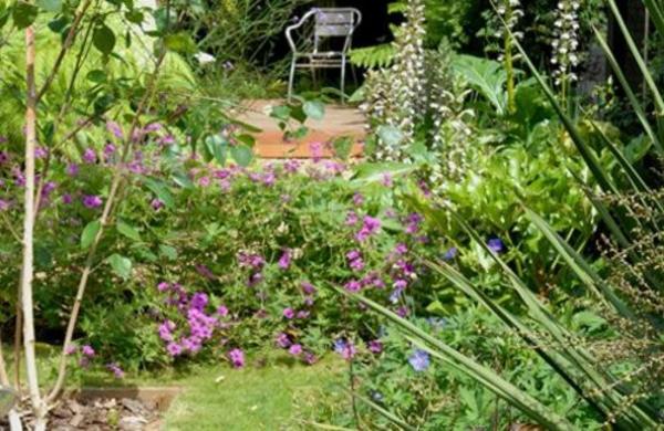 moderne gärten bilder pflanzen dekorativ bunt praktisch