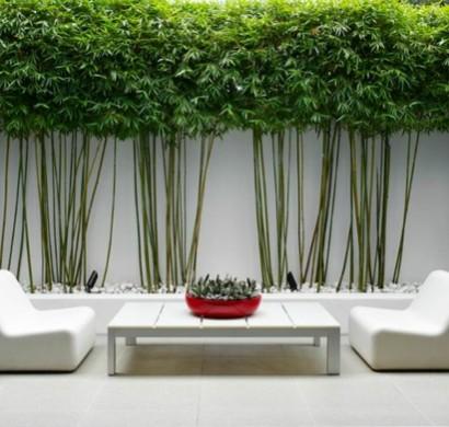 103 beispiele f r moderne gartengestaltung for Gartengestaltung sichtschutz beispiele