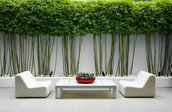 Moderne gartengestaltung ideen betonboden sichtschutz weiße möbel