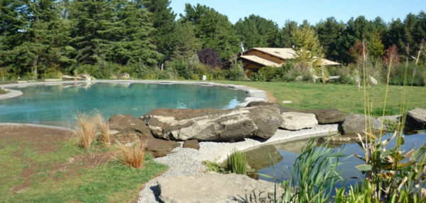 natural swimming pools garten