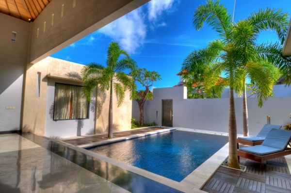 small courtyard pool palmen landschaft