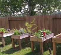 Einmalige Gartenideen – kreative Entscheidungen für Ihr Zuhause