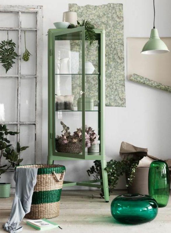 Rustikale Innengestaltung – Sukkulenten und andere Zimmerpflanzen