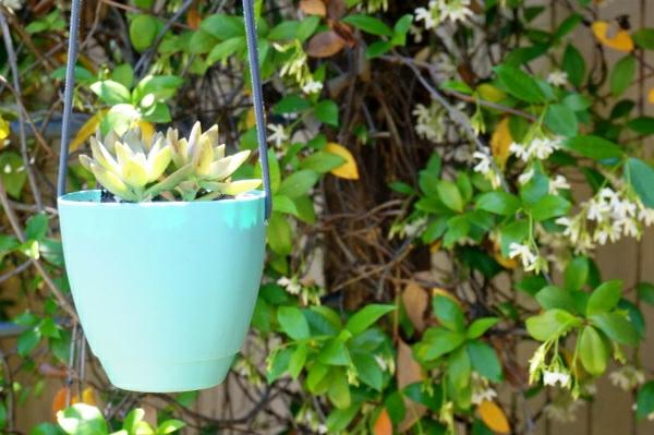 Wanddeko machen bastelideen diy hängeblumen