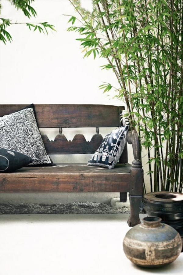 Zimmerbambus kaufen glücksbambus pflegen feucht attraktiv
