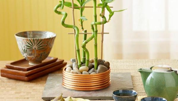 Gartenmobel Rattan Design : Bambus Pflanzen Balkon Ideen Glas Metall Geänder Immergrüne