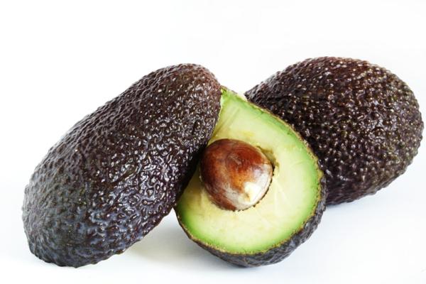 avocado züchten avokado kern avokado reif