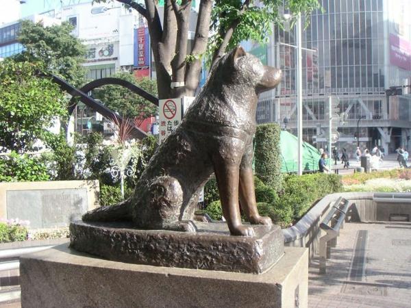 kunstwerke hachiko skulpturen und statuen