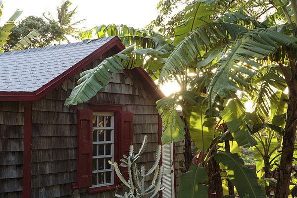 coole einrichtungsideen außenbereich gestalten gartenhaus