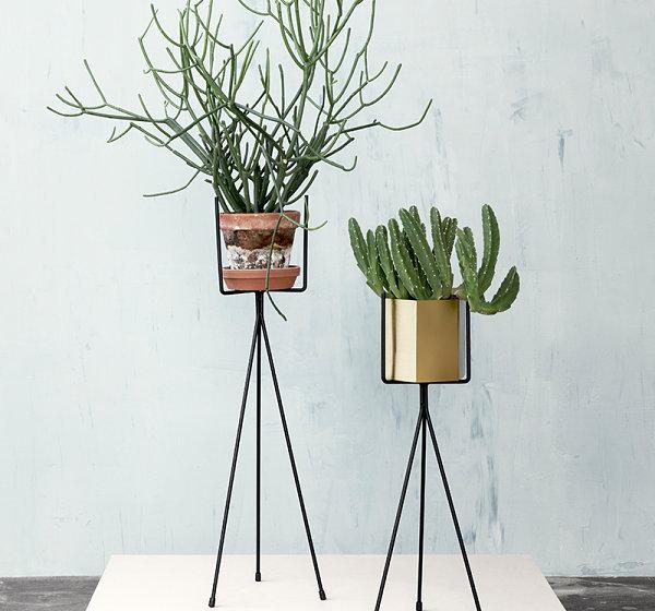 coole wohntrends umweltfreundlich pflanzen pflanzenständer modern