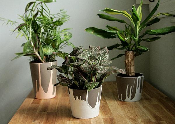 diy projekte pflanzen übertopfe keramik