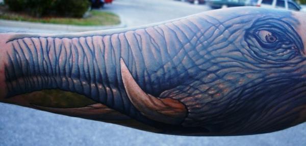 elefant gesicht tattoo unterarm